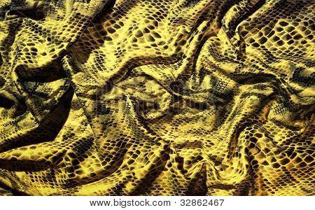 Folded snake skin