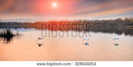Sunset at the lake in Africa, by the Gaborone dam in Botswana