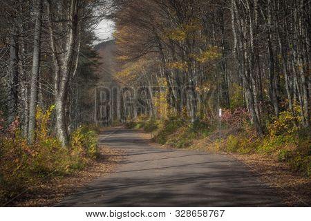 Scenic road through Parc de la Jacques-cartier national park near  Quebec  city