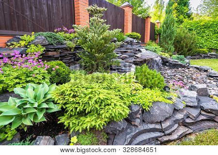 Landscape Design Of Home Garden Close-up. Detail Of Beautiful Landscaped Garden With Green Plants, F