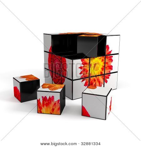 3d cube with photo over white background