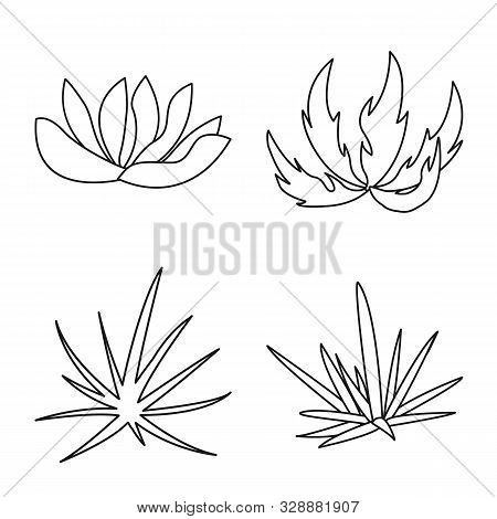 Isolated Object Of Hedge And Shrub Icon. Set Of Hedge And Floral Stock Vector Illustration.
