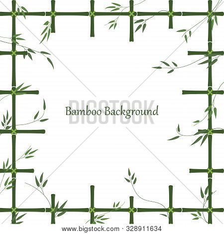 Bamboo Background In The Form Of A Window Made Of Bamboo Sticks. Green Pattern Of Trellis And Bamboo