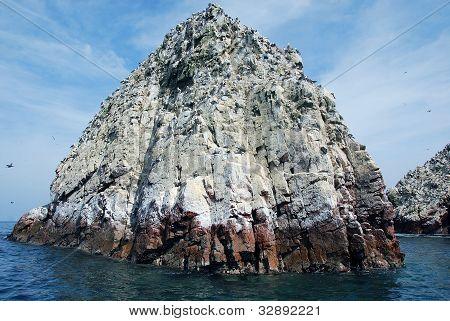 The Ballestas Islands