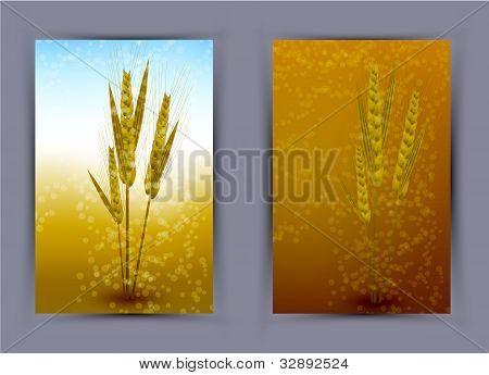 Vector Wheat Creative Poster. Eps10