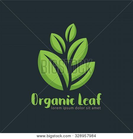 Organic Leaf Logo Template In Vector Format, Easy To Customize, Organic Leaf