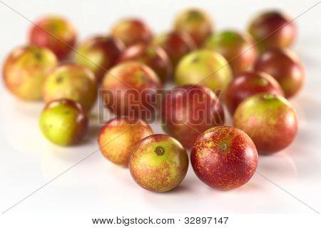 Camu-camu Berry Fruits