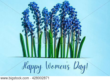Happy Womens Day Postcard Layout. Spring Modern Still Life. Blue Muscari Flowers Growing From Rectan