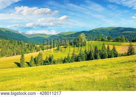 Countryside Summer Landscape. Meadows, Pastures And Forest On The Hills. Mountainous Scenery On A Br