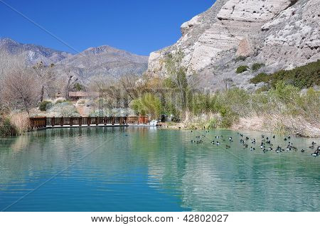 Pond at Whitewater Canyon