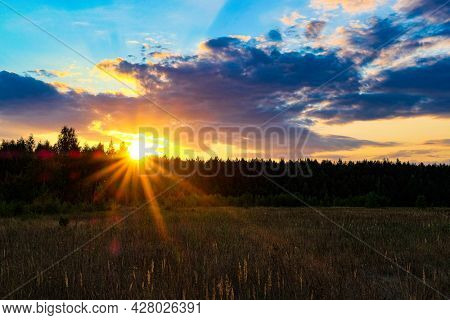Sunset in the woodland in the center of Russia