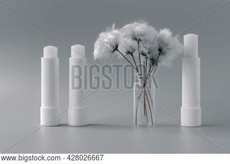 Hygienic Lip Balms And Fluffy White Flower On Gray Background.