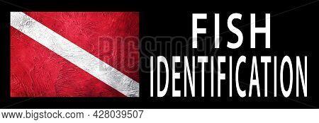 Fish Identification, Diver Down Flag, Scuba Flag, Scuba Diving
