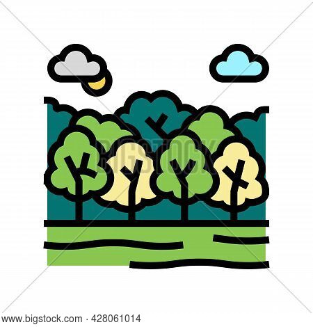 Deciduous Forests Color Icon Vector. Deciduous Forests Sign. Isolated Symbol Illustration