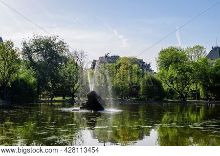 Vivid Green Landscape With Old Large Linden Trees And Green Leaves Near The Lake In Cismigiu Garden