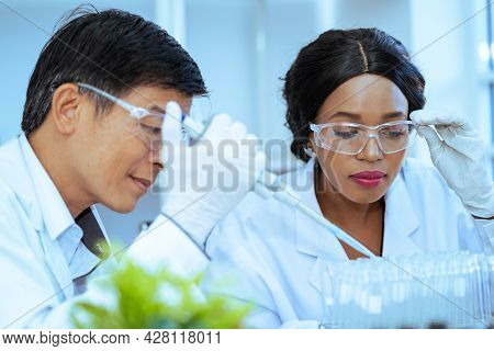 Scientist  In Laboratory With Holding A Test Tube. Medical Healthcare Technology And Pharmaceutical