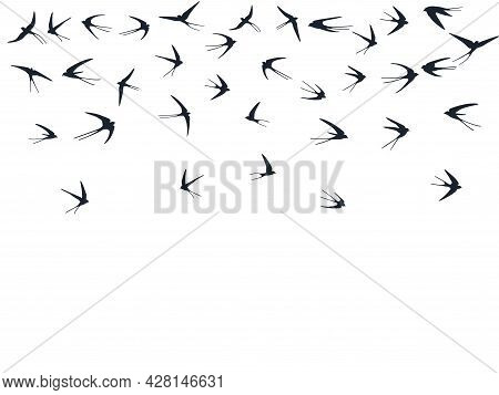 Flying Martlet Birds Silhouettes Vector Illustration. Migratory Martlets Swarm Isolated On White.