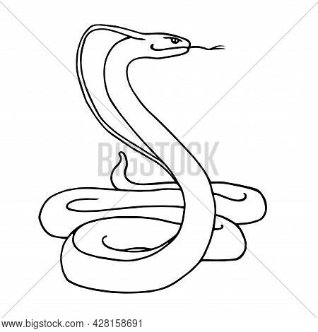 Venomous Snake, Indian King Cobra In A Stand, Dangerous Reptile, Vector Illustration With Black Cont