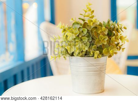 Artificial  Flower Decorated Near Window With Natural Light