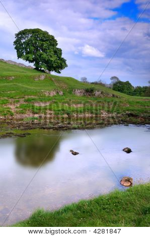 Quiet peaceful part of the Wharfedale near Burnsall near Grassington North Yorkshire England UK poster