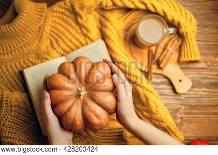 Ripe Pumpkin In Womens Hands Over Knitted Sweater. Hot Cocoa With Cinnamon Sticks On Wooden Tray. Or