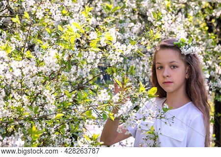 Beautiful Teenage Girl With Long Blonde Hair In White Clothes Enjoys The Spring Cherry Blossom. A Fl