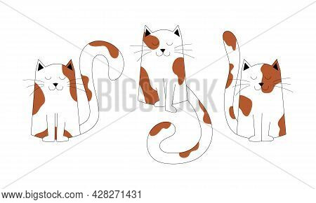 Kittens Characters, Cute Pets, Can Be Used As Element Of Decor, Design. Set Of Cute Spotted Cats Sit