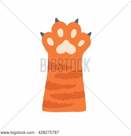 Cute Cats Paw With Soft Pads And Spreaded Fingers With Claws. Ginger Feline Animals Hand Hunting. Ad
