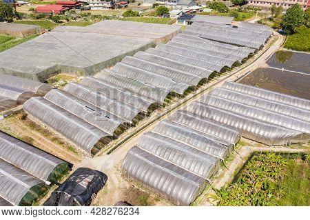 aerial view of greenhouse in Puli township, Nantou, Taiwan