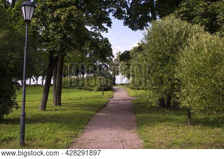 Sandy Path Among Curved Trees. Public Park During Summer In Sunlight With Wooden Bench, Beautiful Wi