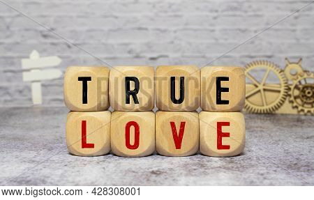 True Love - Romance Concept -isolated Text In Letterpress Wood Type Blocks.