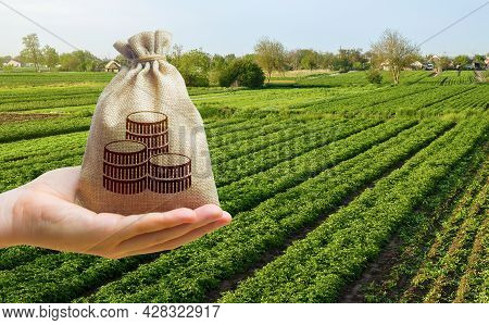 Money Bag And Farm Field Background. Lending And Subsidizing Farmers. Grants, Financial Support. Agr