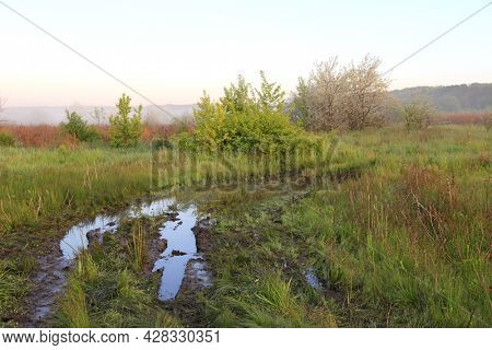 morning scene with puddle on dirt road in steppe