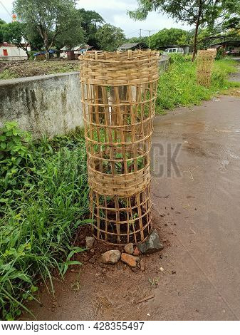 Stock Photo Indian Traditional Handmade Bamboo Woven Fence Used In Indian Village Area For Protectin