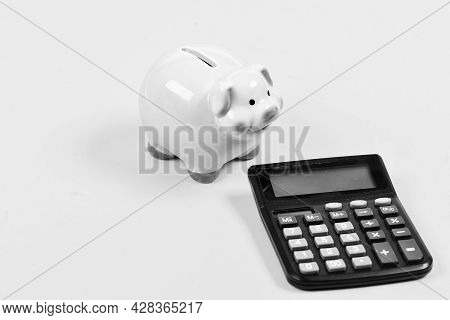 Savings. Bookkeeping. Financial Problem. Planning And Counting Budget. Moneybox With Calculator. Pig