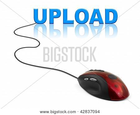Computer Mouse And Word Upload