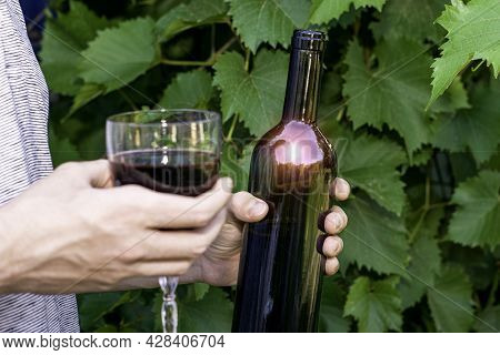 The Winemaker Holds A Bottle A Glass Of Red Wine In His Hands The Glare Of The Sun On The Wine Bottl