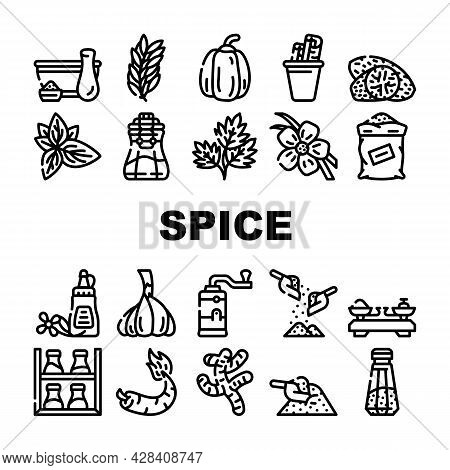 Vegetable Food Collection Icons Set Vector. Vanilla Sticks And Cinnamon, Delicacy Taste Basil Leaves
