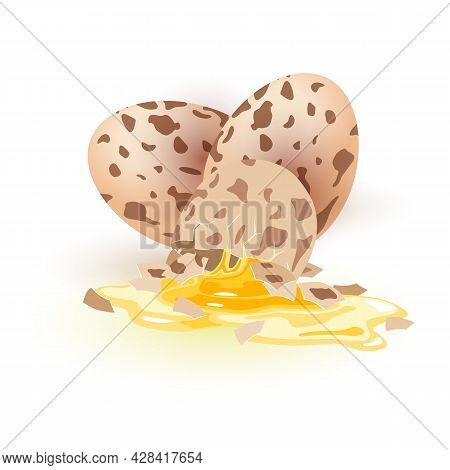 Healthy Eating And Delicacy For Morning Meal. Vector Broken Eggshell And Liquid White And Yolk. Prot
