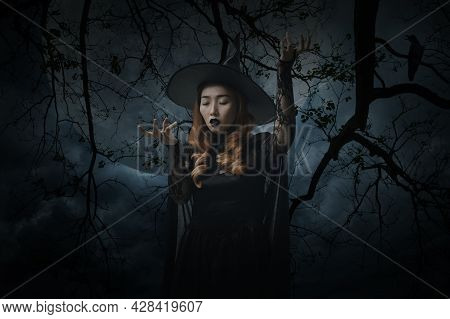Mystery Halloween Witch Standing Over Dead Tree, Crow, Birds, Full Moon And Spooky Cloudy Sky, Hallo