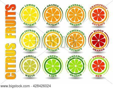 Creative Concept Set Of Round Cartoon Logos With Citrus Fruits Icons. Flat Illustration Symbols Of O