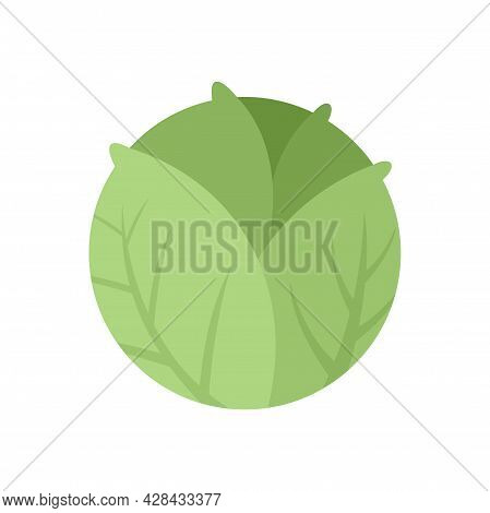 Cooking Cabbage Icon. Flat Illustration Of Cooking Cabbage Vector Icon Isolated On White Background