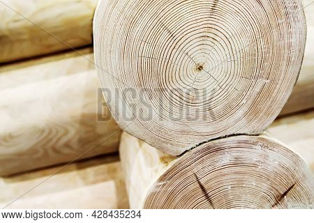 Fragment Of A Structure From A Tree Trunk. Construction Of A Wooden Log House. Close-up