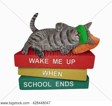 A Gray Cat In A Sleep Mask Is Sleeping A Pile Of Books. Wake Me Up When School Ends. White Backgroun