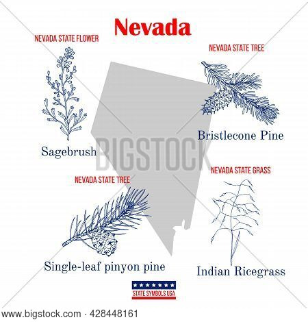 Nevada. Set Of Usa Official State Symbols. Vector Hand Drawn Illustration