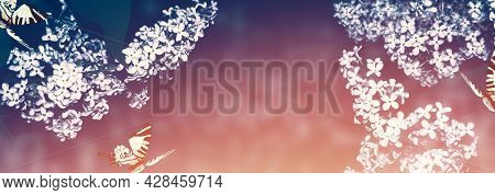 Insects Butterflies. Spring Branch Of Blossoming Lilac. Beautiful Violet Lilac Flower