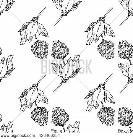 Vector Seamless Pattern Of Flowering Clover. A Pattern Of A Hand-drawn Sketch-style Curved Meadow Cl
