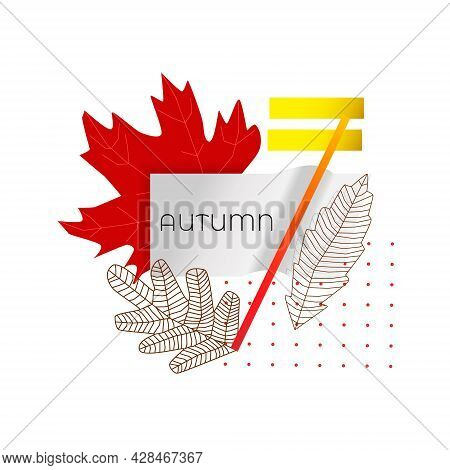 Vector Illustration With Isolated Abstract Design, Frames On Theme Of Autumn. Dried Branches, Fallen