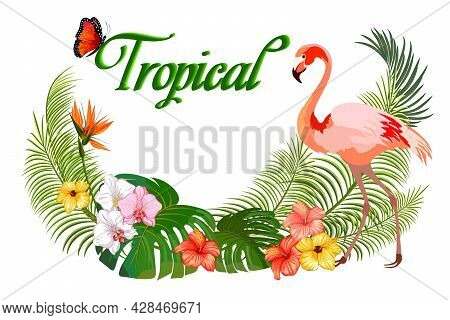 Colored Vector Illustration With Flamingos.flamingos And Tropical Vegetation In Color Vector Illustr
