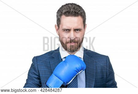 Charisma. Boss Show Power And Authority. Strong Businessman In Boxing Gloves. Successful Ceo Boxer